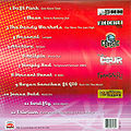 Rock Festivals – back cover.jpg
